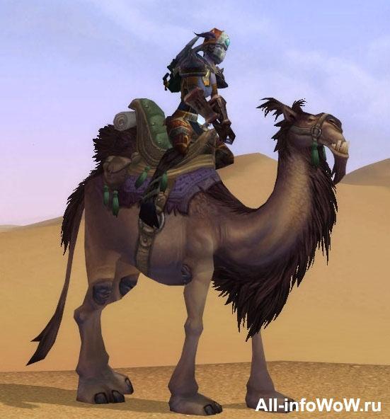 Темный ездовой верблюд