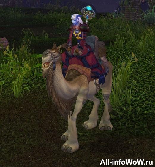 Палевый ездовой верблюд